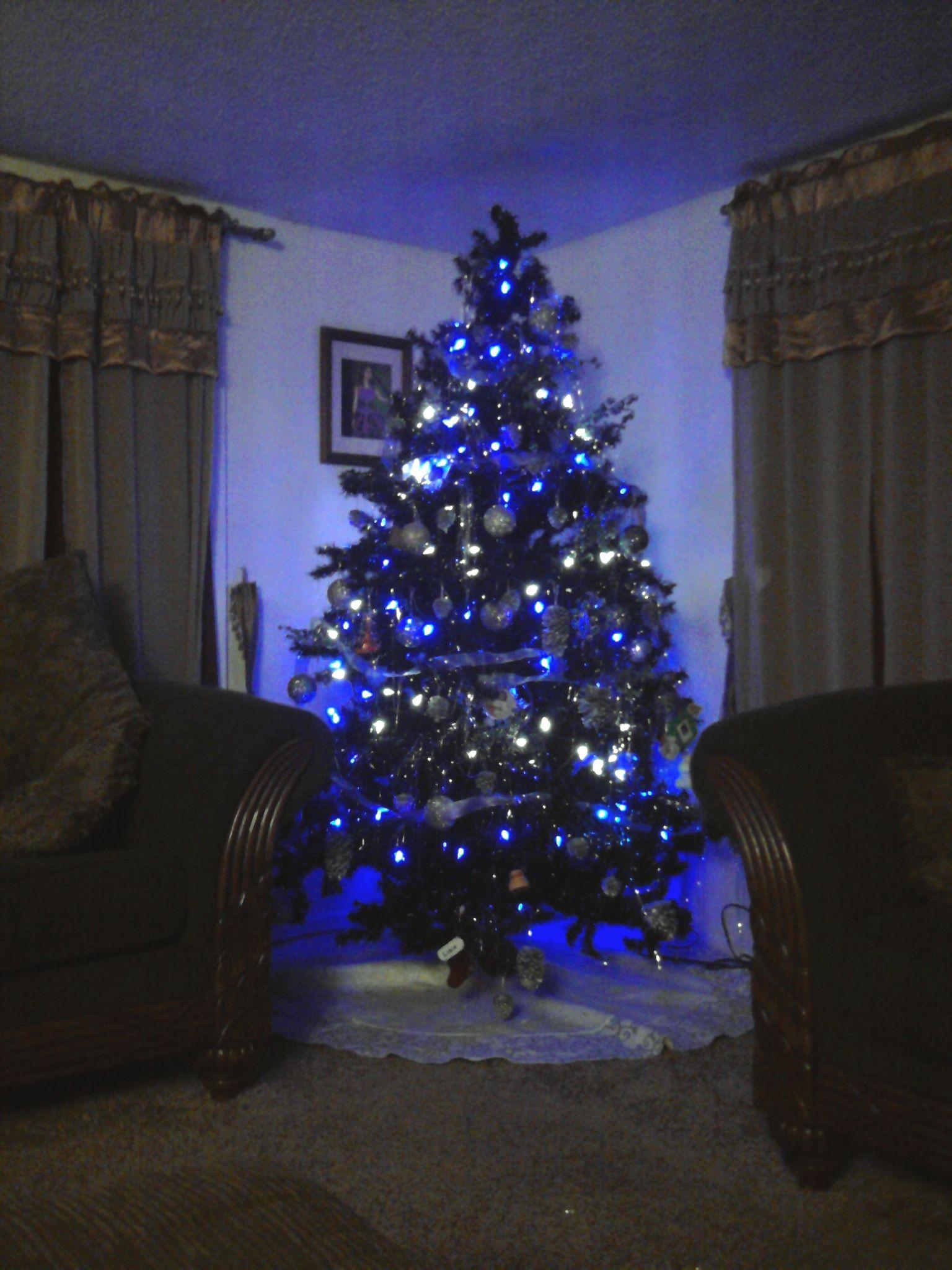 Black Christmas Tree With Purple Lights Christmas Lights Ideas